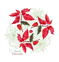 Background with bouquet of red poinsettia-08 vector
