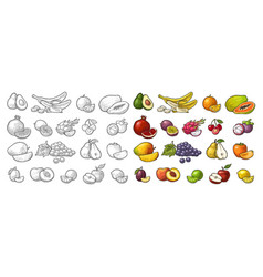 Set tropical fruits black vintage vector