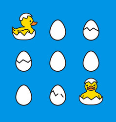 yellow ducks chicks hatching from eggs vector image