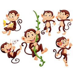 Little monkeys doing different things vector image