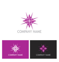beauty star diamond logo vector image