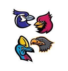 Bird wildlife mascot collection vector