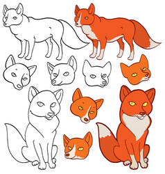 Cartoon foxes vector