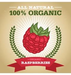Organic Raspberry vector