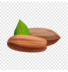 Pecan icon cartoon style vector