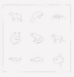 set of zoo icons line style symbols with frog vector image
