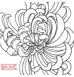 Sketch - card with flowers vector