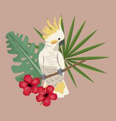 cockatoo bird exotic hibiscus palm leaves vector image