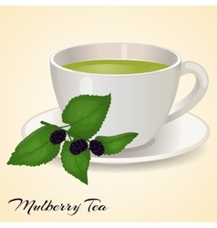 Cup of tea with Mullberry and leaves isolated on vector image vector image