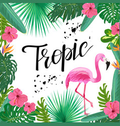 bright template with tropical plants flowers and vector image