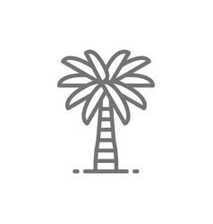 Coconut palm tree line icon vector