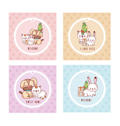 Cute greeting card with pets cartoon vector