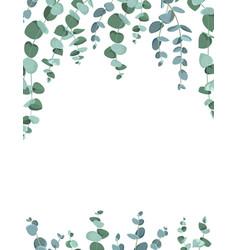 Eucalyptus border frame on white background vector