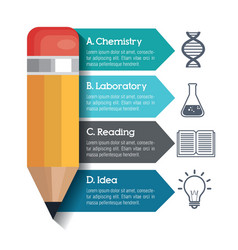 Infographic education and pencil graphic vector