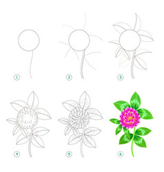 page shows how to learn step step to draw vector image