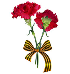 Red carnation flower bouquet and st george ribbon vector