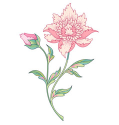 stylized blooming flower vector image