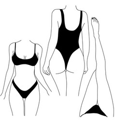 Woman bodies in bikini vector