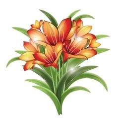 bunch of orange lilies vector image