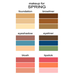 Best makeup colors for spring type of appearance vector