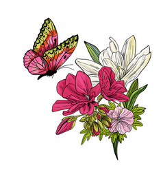 butterfly flying above on lillies and begonia vector image