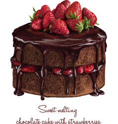 Chocolate cake with strawberries vector