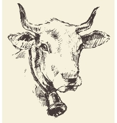 Cow head with bell dutch cattle breed drawn sketch vector
