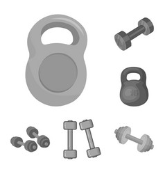 design of weight and lifting icon set of vector image