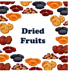 dried and sweet fruits vector image