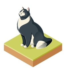 Isometric furry cat vector