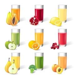 juce in glasses vector image