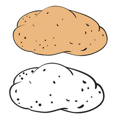 potato in color and without color in outline vector image
