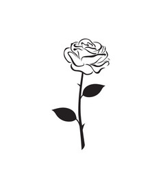 Rose flower icon vector