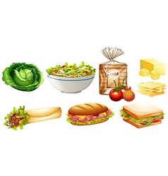 Set of different kinds of food vector image
