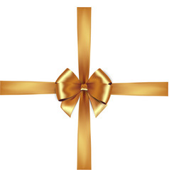 shiny golden satin ribbon isolate gold bow vector image
