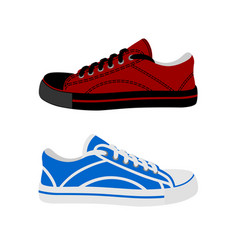 sneakers in the on a white backgroundlogo vector image