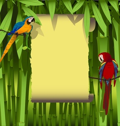 parrots on a branch of liana vector image vector image