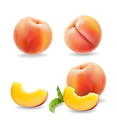 ripe peach fruit with leaf isolated realistic vector image vector image