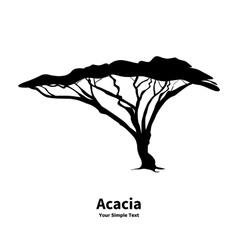 silhouette of an acacia vector image