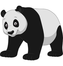 Adult funny panda vector