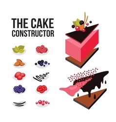 Cake constructor Sweet dessert recipe Modern vector image