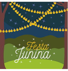 Colorful poster festa junina with nightly vector