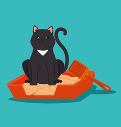 Cute cat in sand box pet friendly vector