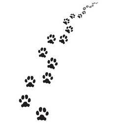 footprints dog vector image