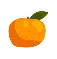 Fresh tangerine fruit on a vector