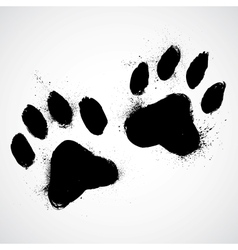 Grunge dog paws vector image
