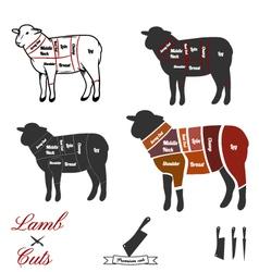 Lamb cuts vector image