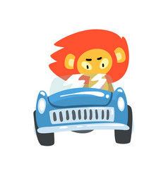Lion driving blue car wild animal character using vector
