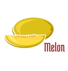 Ripe aroma melon fruit with slice vector