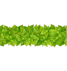 Seamless border with green leaves vector